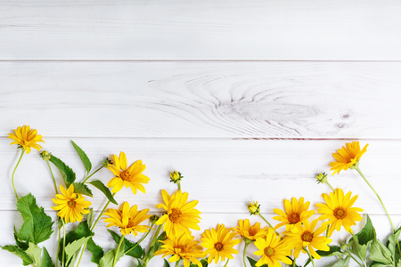 inulin: Yellow flowers on light wooden background. High top view.