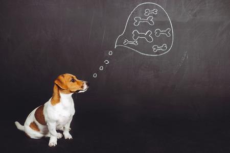 Welpe Hund sitzen und träumt von natürlichen Lebensmitteln in einer Gedankenblase in der Nähe von Tafel