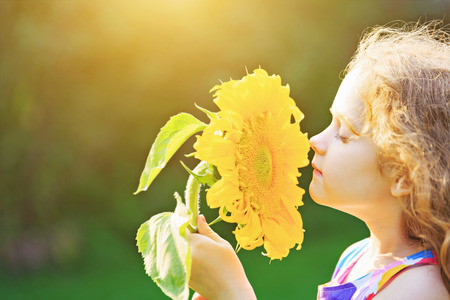 Joyful child smell sunflower enjoying nature in summer sunny day. Healthcare, freedom and happy childhood concept.