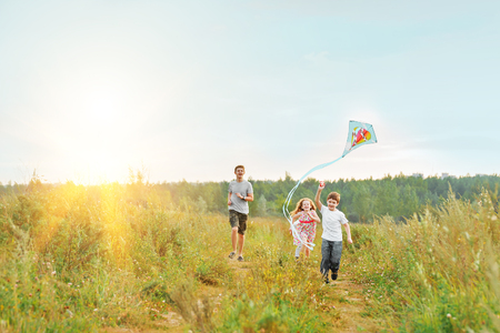 Children enjoy playing with a flying kite in meadow on sunny day.