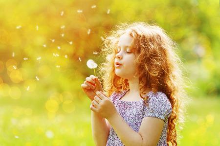 小さな巻き毛の少女吹いてタンポポ。 写真素材