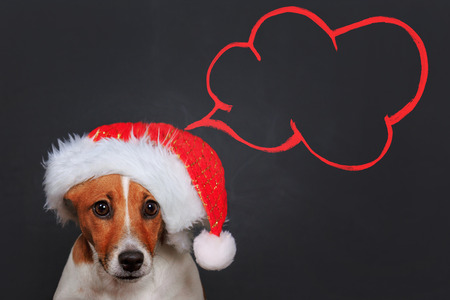 cute puppy: Cute puppy dog in Santa hat with dreaming clouds. Christmas, holiday background.