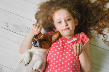 mini jack: little girl with her puppy Jack russell terrier lying on a wooden floor. Stock Photo
