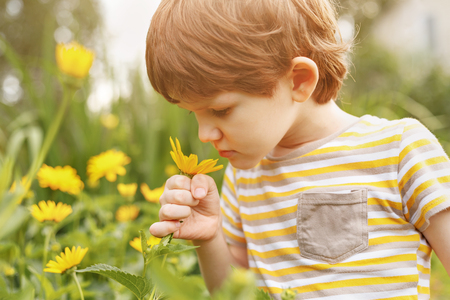 Child smelling daisy flower. Healthy, medical concept. Stock fotó