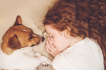 Zoet krullend meisje en Jack Russell hond slaapt in de nacht. Stockfoto