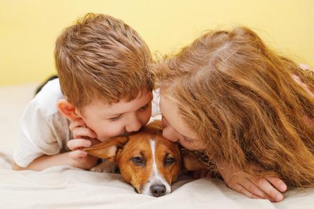 幼い男の子と女の子キス子犬ジャック ラッセル犬。
