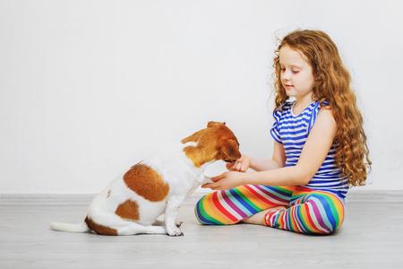 Een klein meisje is aan het trainen van de dog jack russel terrier.