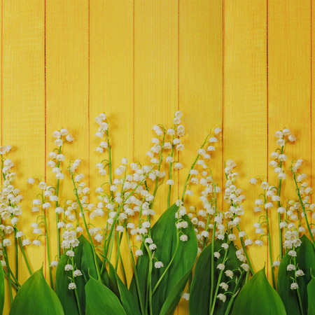 Spring flowers Lily of the valley in yellow wooden background. Zdjęcie Seryjne
