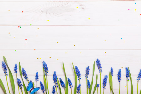 Spring Muscari flowers and butterfly with composition on wooden background. Stock Photo