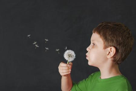 Little boy blowing dandelion on blackboard background.