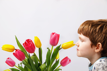 Child is sniffing a tulips flower. Imagens - 97875851