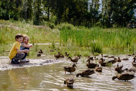 Little boy and girl feeding ducks on abandoned lake. Stock fotó