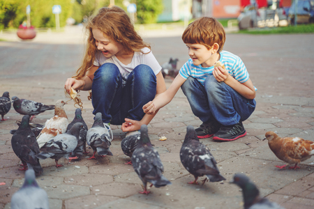 Children is feeding pigeons with bread outdoors. Stockfoto