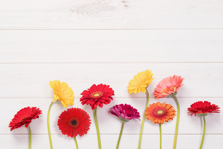 Red, yellow gerbera flowers in wooden background. Hello spring, Easter concept. Фото со стока