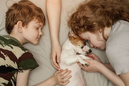 Children's laying and hugging a puppy Jack Russell Terrier.  Animal protection concept. Foto de archivo - 128854004