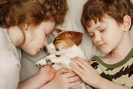 Children's laying and hugging a puppy Jack Russell Terrier.  Animal protection concept. Foto de archivo - 128854005