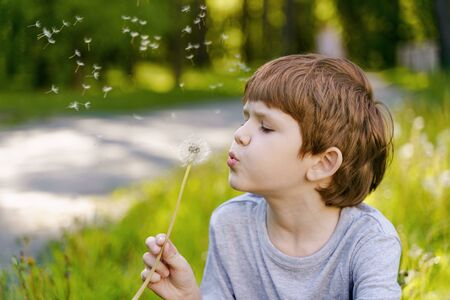 Cute little boy blowing dandelion.
