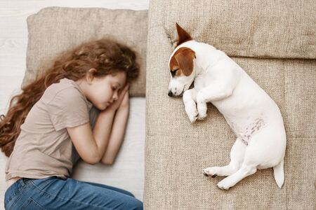 Cute puppy is sleeping on the bed, and the child is sleeping on the floor. Education, discipline, training concept. Foto de archivo - 128854046