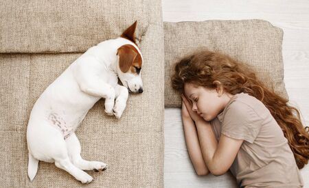 Cute puppy is sleeping on the bed, and the child is sleeping on the floor. Focus to girl. Education, discipline, training concept. Foto de archivo - 128854048