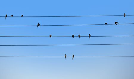 Swallows are sitting on electric wires. Bird notes. Natural music concept. Foto de archivo - 128854270