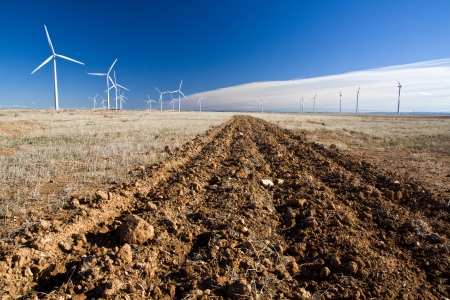 furrows: Furrows in red earth that get lost in the horizon, with white wind generators and blue sky background with clouds contrail