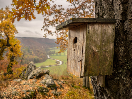 birdhouse with great view