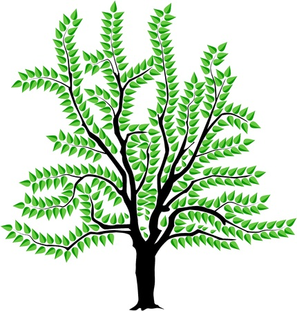 Vector image of a tree in spring.