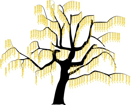 Vector image of a tree in autumn illustration.