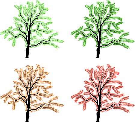 vector image of a tree in four different settings