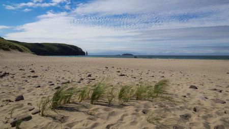 Grass on sandy terrain at Sandwood Bay beach, northern Scotland Banque d'images