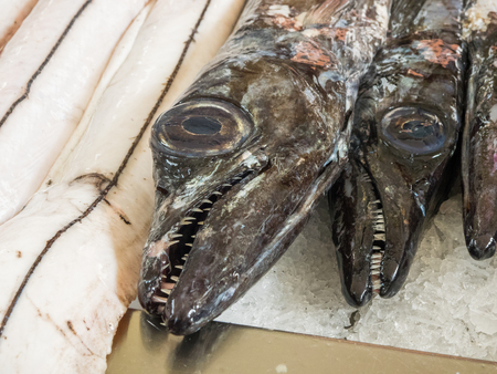 Black Scabardfish (Aphanopus carbo) on ice at the market in Funchal, Madeira