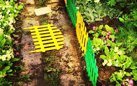 seed bed: beautiful part of the floral garden with decorative fence Stock Photo
