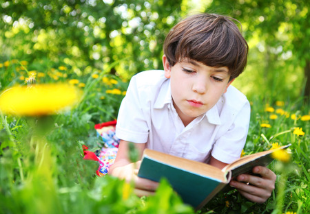 preteen: preteen handsome keen boy red and old book in the summer park with dandelion flowers Stock Photo