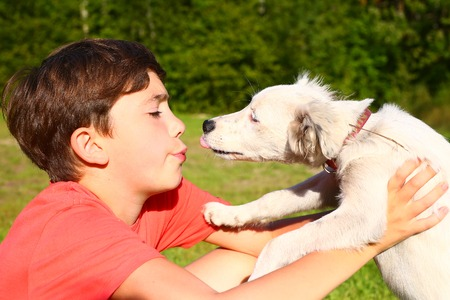 preteen: preteen handsome boy play with white puppy on the summer country background