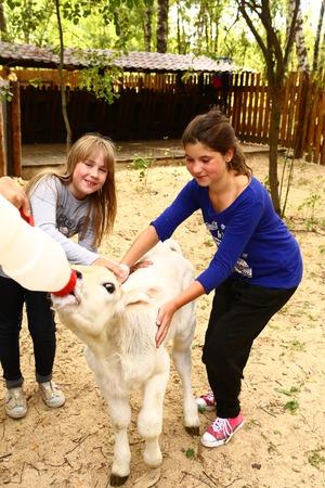 teat: girls feeding baby goat from nipple milk bottle