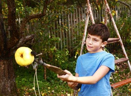 pluck: preteen handsome boy pluck ripe apples from the tree with special device Stock Photo