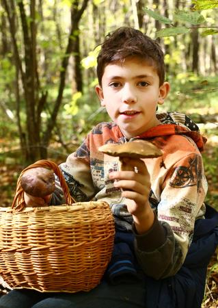 recoger: preadolescente chico guapo recoger setas en el bosque de otoño Foto de archivo