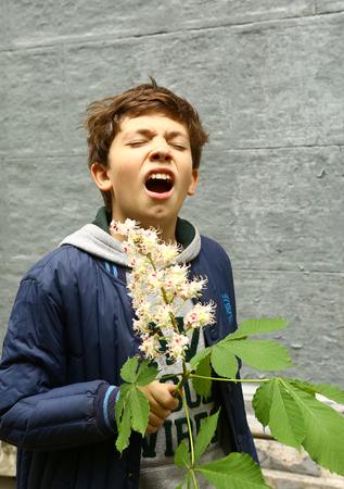 airborne: preteen handsome boy sniffing with chestnut flowers closeup prtrait Stock Photo