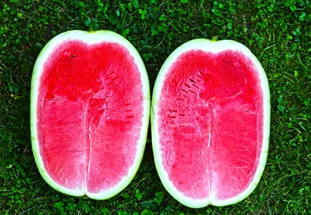two and a half: two half ripe water melon close up photo on the green grass background