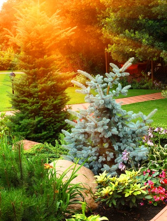 landscaped garden: beautiful landscaped garden with stone, pine tree, blue fir, lily and flowers Stock Photo