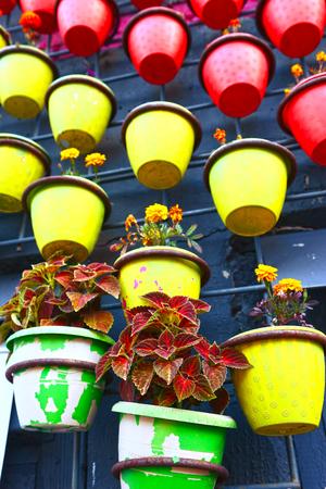 wall decor: pot plants decorate wall as an exterior decor idea