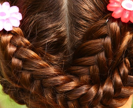 hairdress: plaited brown hair with flower clips close up photo