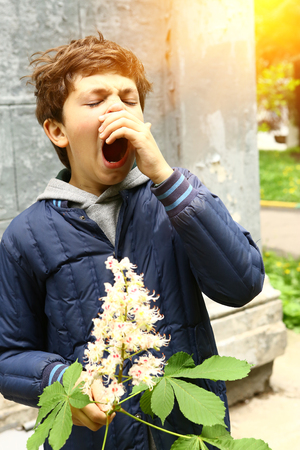 preteen boy with chestnut flowers and sneezing from seasonal pollen allergy Stock Photo