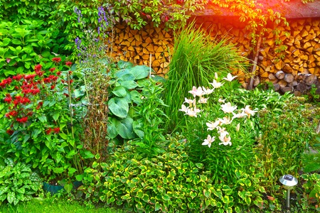 landscaped garden: Lush landscaped garden with flowerbed and colorful plants firewood. Beautiful garden Stock Photo