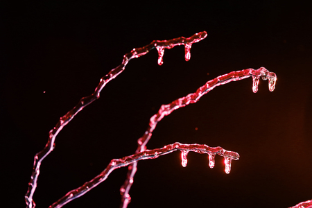 screen savers: frosen icicles on tree branches night sceen close up picture Stock Photo