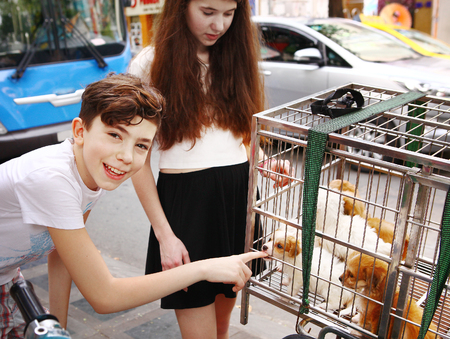 motobike: tourist kids with puppy in cage on asian street
