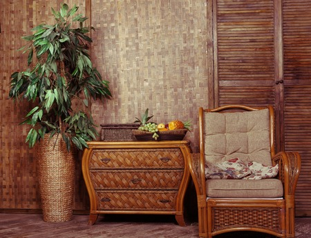 living room with wicker furniture arm chair chest drawer and pot plant vase