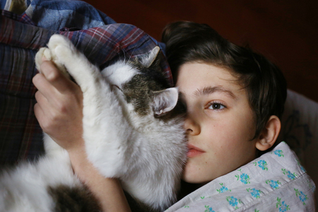 companionship: teenager boy in bed with cat cullde close up photo
