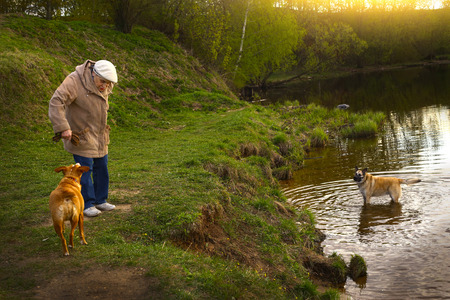 beagle terrier: Moscow, Russia, May 13, 2017: Unidentified senior pensioner old woman with dog walk in city park on spring sunny day in Russia, Moscow, May  13, 2017. Editorial