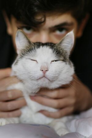 teenager boy sleep with cat in bed close up photo Banco de Imagens